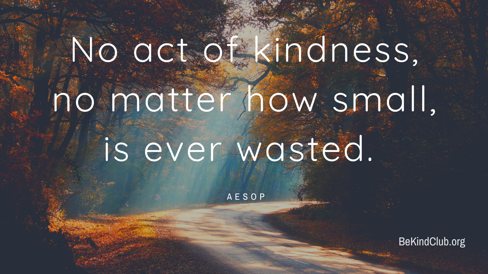 Coalition for human kindness Be Kind Club